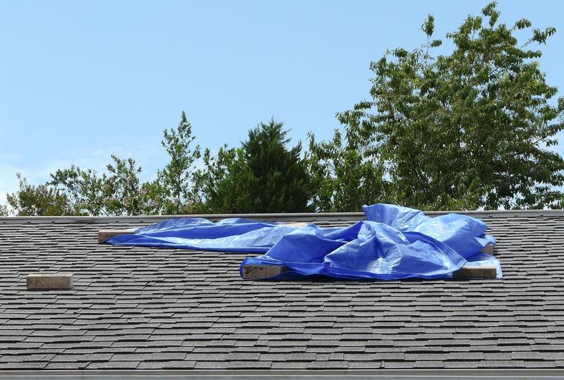 roof leak repair Kirkland